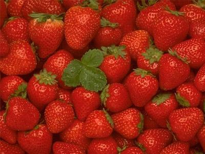 http://www.biozemledelie.com.ua/userfiles/image/klubnika/1219587600_klubnika.jpg
